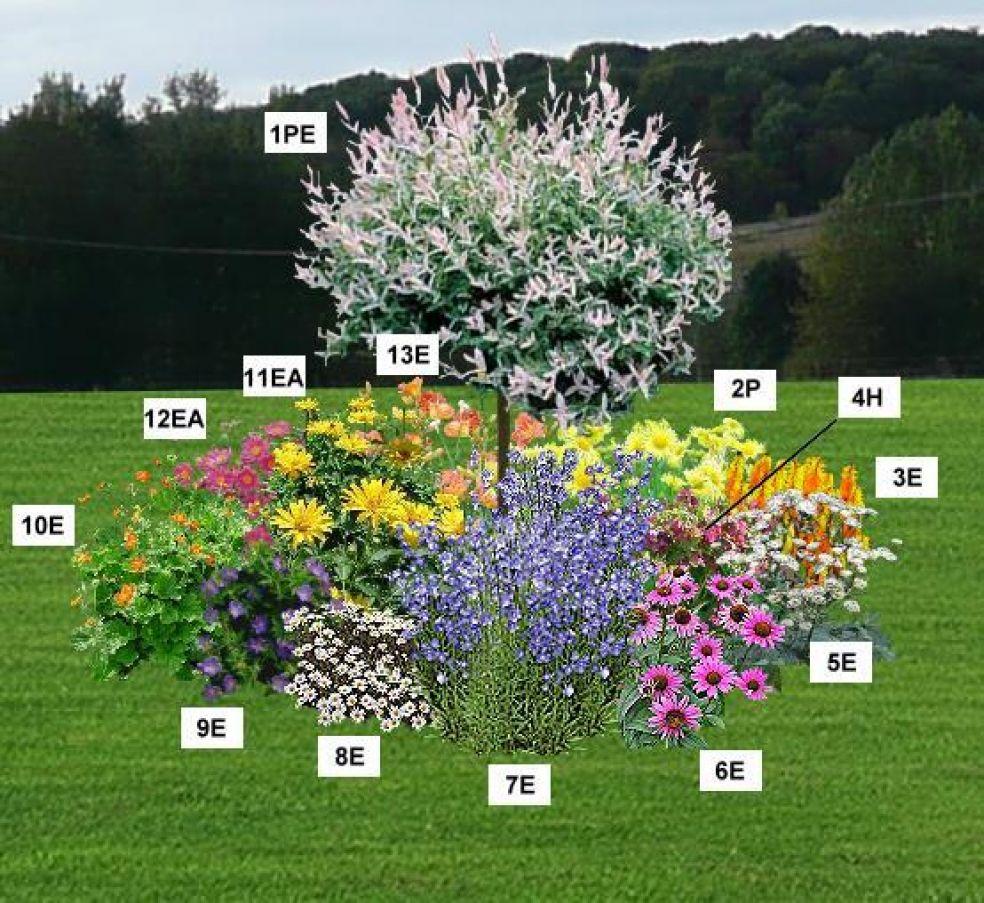 Le jardin du pic vert for Photo massif jardin