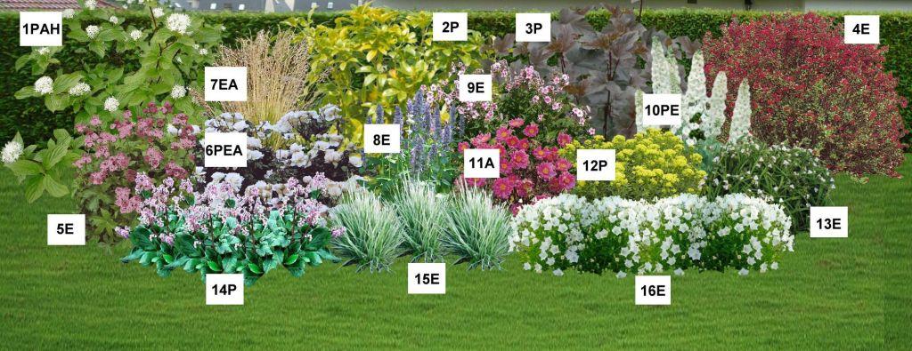 Le jardin du pic vert for Jardin anglais mixed border